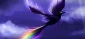 Savaş karşıtı kuşların şiiri: Zümrüdü Anka