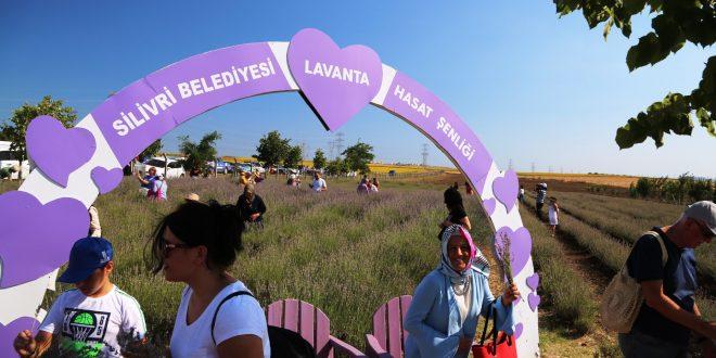 Lavanta Moru, Marka Kent SİLİVRİ